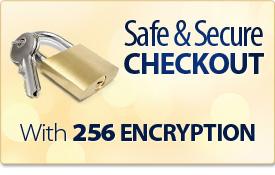 safe_checkout